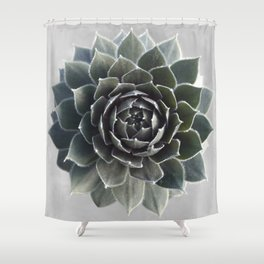 Succulent Photography Nature Plant Green Cactus Floral Art Shower Curtain