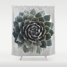 Succulent Photography Nature Plant Green Cactus Floral Art Shower Curtain
