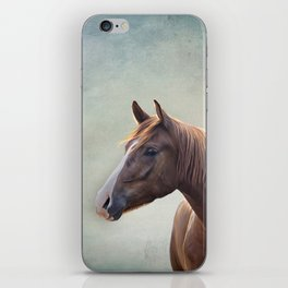 Horse. Drawing portrait iPhone Skin