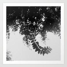 Leaf Curl Art Print