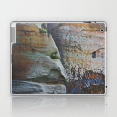 Clever Guise Laptop & iPad Skin