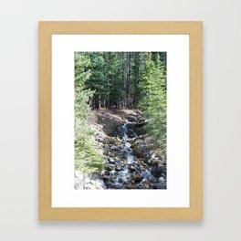 Hidden Treasure 1 Framed Art Print