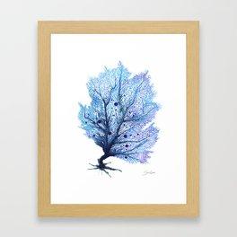 Fan Coral - Blue Framed Art Print