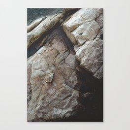 Rock Texture Canvas Print