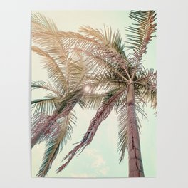 Sunny San Diego Day with Palm Trees Poster