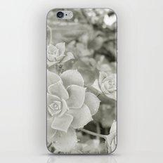 Beautiful Nature No. 1 iPhone & iPod Skin