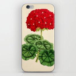 Smith, Worthington G. (1835-1917) - The Floral Magazine 1869 - Double Pelargonium iPhone Skin