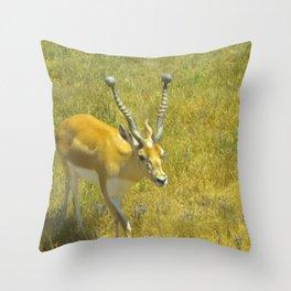 Care Free Throw Pillow
