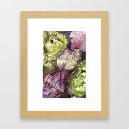 Any Thoughts on Cabbages? Framed Art Print