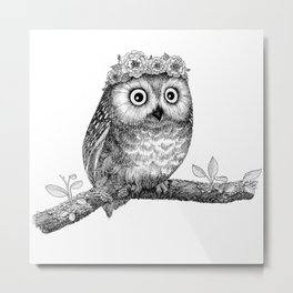 A Little Saw-whet Metal Print