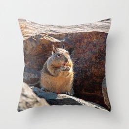 Squirrel Having Snack Throw Pillow