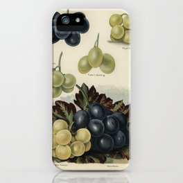 Vintage illustration of grape The Fruit Grower's Guide (1891) by John Wright. iPhone Case