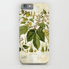 Common Hop Botanical Print on Vintage almanac collage Slim Case iPhone 6