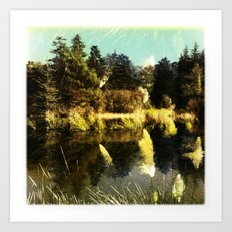 Water Field Art Print