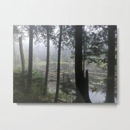 Adirondack Foggy Pond Metal Print