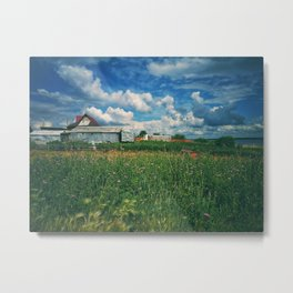 Summer on a village Metal Print