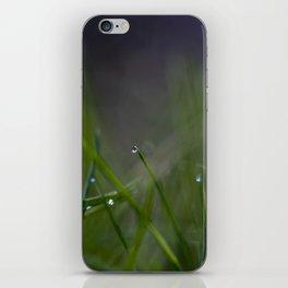 in the yard iPhone Skin
