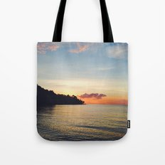 Disappear and hide Tote Bag