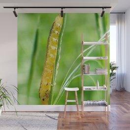 Magic Grass - Caterpillar - Macro Wall Mural