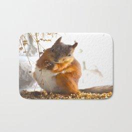 Mommy Squirrel  Bath Mat