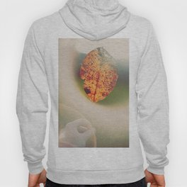 Signs of Decay. Hoody