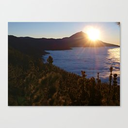 Sunset Canary Islands forest and Volcano Teide in Tenerife Canvas Print