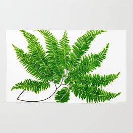 Antique Fern Print No.5 Green Nature Botanical Art Rug