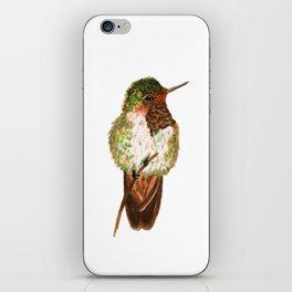 Volcano Hummingbird iPhone Skin