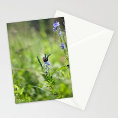 Summer 3562 Stationery Cards