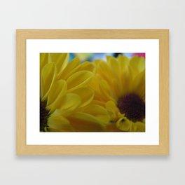 Summer Sun Framed Art Print