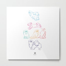 Colourful Tibetan Spaniel Minimalist Outline Pattern Metal Print
