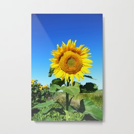 I Stand Alone - Sunflower Metal Print