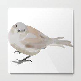 Sketchy Sparrow  Metal Print