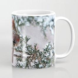Snow on His Back (Northern Cardinal) Coffee Mug