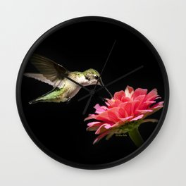 Hummingbird V Wall Clock