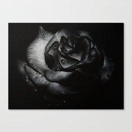 B&W Rose Drawing Canvas Print