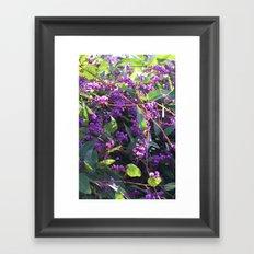 Christy's Garden 4 Framed Art Print