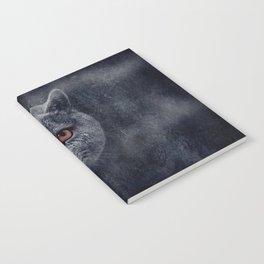 Diesel is here Notebook