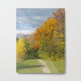 Walking Through Autumn Metal Print