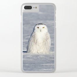 The Snow Queen Clear iPhone Case