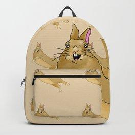 Butterscotch Binkie - Patterned+Main Backpack