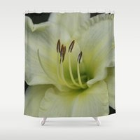 lily Shower Curtains featuring Lily by IowaShots