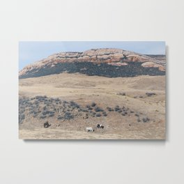 Happy Jacks Metal Print