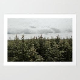 Dutch Forest Tree Tops | Colourful Travel Photography | Veluwe, Holland (The Netherlands) Art Print