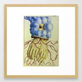 Wunderkammer Tav.6 Framed Art Print