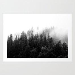 Adventure Forest, Fog, Landscape Art Print