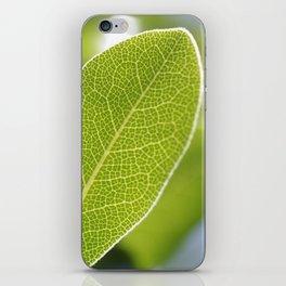 leave-leaf iPhone Skin