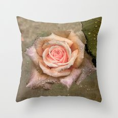 Vintage rose with water drops Throw Pillow