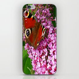 Peacock Butterfly Impression iPhone Skin