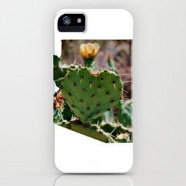 Sonoran Love / Arizona iPhone Case
